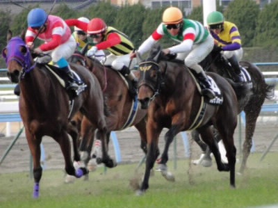 颯爽する騎手と馬たち